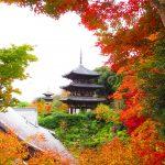 【奈良】紅葉の合間から覗く三重塔が美しい「當麻寺」の御朱印
