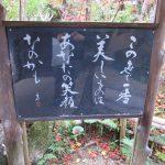 【奈良】唯一無二の墨彩画が素敵な「當麻寺宗胤院」の御朱印