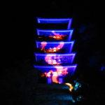 【奈良】五重塔に龍が昇る!紅葉ライトアップが幻想的な「室生寺」の御朱印