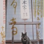 【京都】看板ねこが可愛らしい♪在原業平ゆかりのお寺「十輪寺」(業平寺)の御朱印