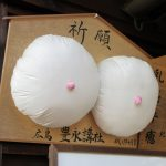 【和歌山】乳房型絵馬に子宝を祈願する女人高野「慈尊院」の御朱印帳と御朱印