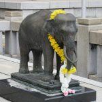 【愛知】日本唯一の超宗派の国際的寺院「日泰寺」の御朱印