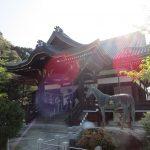【奈良】聖徳太子誕生の地「橘寺」の御朱印