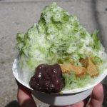 【奈良】日本全国のかき氷の名店が集結♪「氷室神社」の御朱印