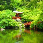 【西国巡礼】Day14-1.上醍醐への険しい山道を行く!第11番札所「醍醐寺」の御朱印