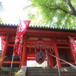 【京都】新緑の紅葉も美しい「毘沙門堂」の期間限定御朱印