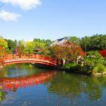 【京都】善女龍王が願い事を一つだけ叶える♪「神泉苑」の令和限定御朱印
