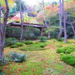 【京都】平家物語の悲恋の尼寺「祇王寺」の秋限定御朱印