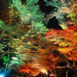 【滋賀】秋の紅葉ライトアップが見事♪「三井寺」の御朱印帳と御朱印
