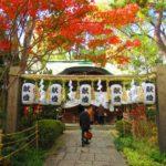 【大阪】一生に一度の願いを叶える「堀越神社」の御朱印