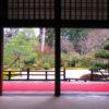 【京都】幽霊の掛け軸に震え上がる!天台宗五箇室門跡の一つ「曼殊院門跡」の御朱印