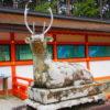 【京都】春日大社第一のご分社「京春日」と名高い「大原野神社」の御朱印