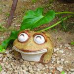 【愛知】戸部蛙が可愛らしい♪「富部神社」の御朱印帳と特別御朱印
