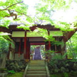【京都】青もみじと苔の緑に癒される「常寂光寺」の御朱印