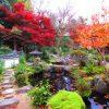 【奈良】紅葉と三重塔がコラボする大和三名園「當麻寺中之坊」の御朱印