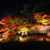 【京都】紅葉ライトアップが見事♪小野小町ゆかりの「随心院」の期間限定御朱印