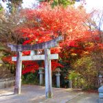 【三重】日本武尊の御陵を祀る!紅葉の「加佐登神社」の御朱印