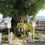 【三重】天下の奇祭「ヤーヤ祭り」で武神を称える「尾鷲神社」の御朱印&マンボウの串焼き
