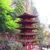 【奈良】女人高野「室生寺」の色鮮やかな御朱印帳と御朱印
