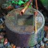 【京都】青紅葉を愛でながら石庭の謎を解く!「龍安寺」の御朱印