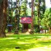 【福井】苔のじゅうたんが広がる白山信仰の拠点!「平泉寺白山神社」の御朱印